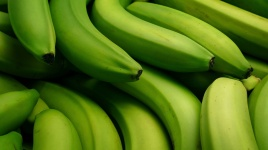 Spanish green bananas